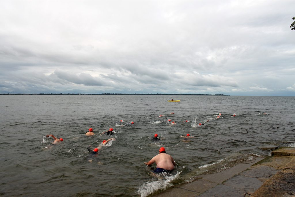 The swimmers are in the water wearing orange caps